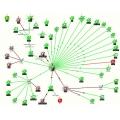 Monitorização de rede